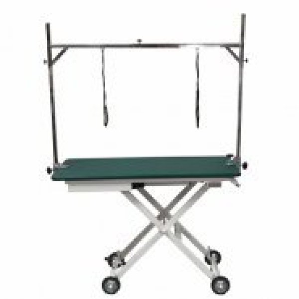 Aeolus Grooming Table