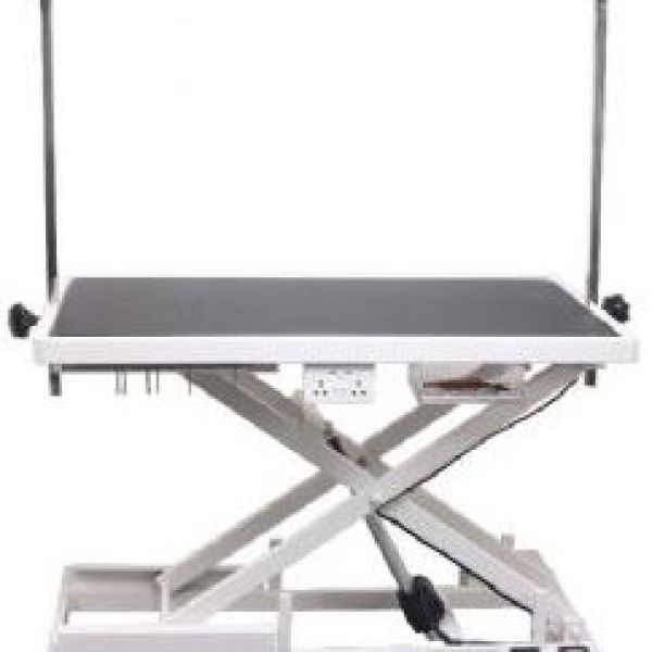 Aeolus Electric Low Grooming Table